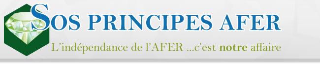 Fondée par François Nocaudie, le premier à avoir révélé le scandale et poursuivi les dirigeants fraudeurs de l'Afer, l'association SOS Principes Afer reste une voix incontournable des adhérents mécontents.
