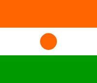 L'affirmation à l'Assemblée nationale, par le député Pascal Terrasse, selon laquelle Areva aurait offert un avion de plus de 30 millions d'euros au président du Niger, nous éclaire sur cette affaire pour laquelle un activiste de l'Observatoire du Nucléaire est poursuivi en diffamation par Areva.