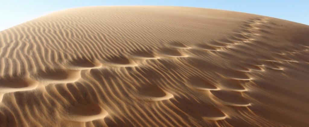 Méfiez-vous du côté obscur des dunes si vous ne voulez pas perdre vos économies dans des châteaux de sables. (photo © GPouzin)